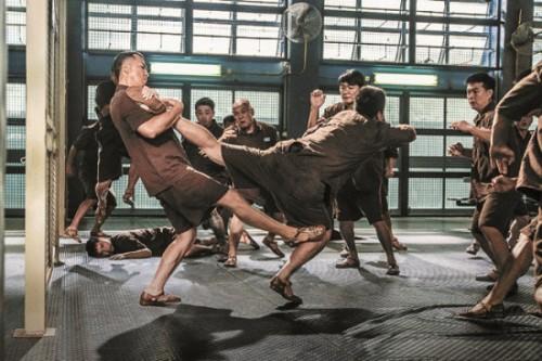 kungfu jungle 17